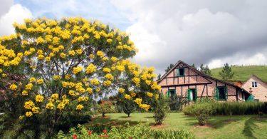 A cidade mais alemã do Brasil - Pomerode