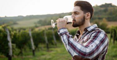 vinícolas serra catarinense